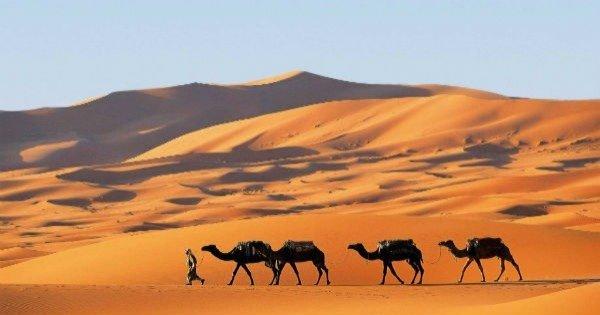 Deserto do Saara: localização e características - Toda Matéria
