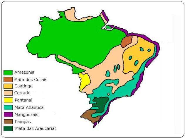 mapa dos ecossistemas brasileiros