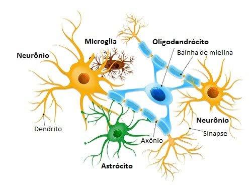 Representação dos neurônios com sua forma típica estrelada, corpo celular e prolongamentos ramificados. Ao redor, estão células da glia, entre elas o oligodendrócito envolve o axônio.